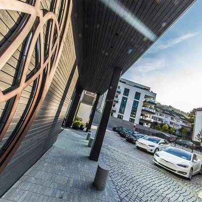 Tesla / Porsche Taycan Schwarzwald e-drive Experience